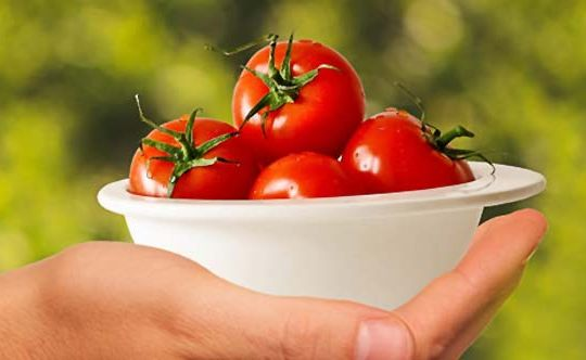 tomato-for-weight-loss