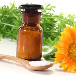 holistic healing with homeopathy and nutrition