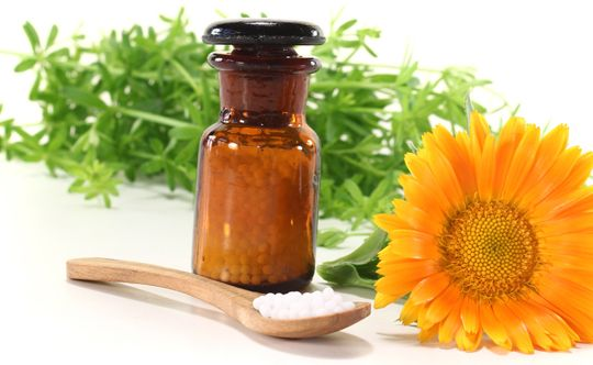 holistic-healing-with-homeopathy-and-nutrition-width-834-height-332