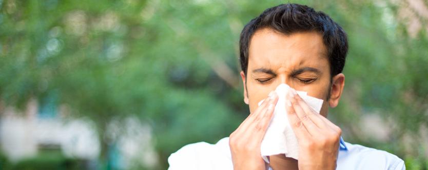 Foods to Beat Flu