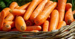 carrots in bucket