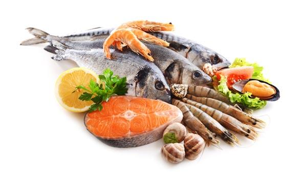 Sea Food and Fish