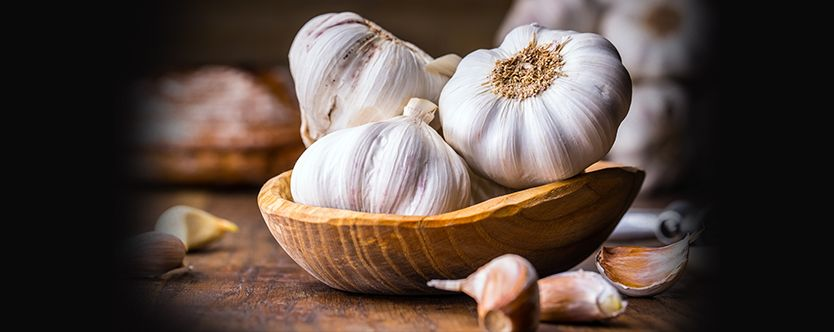 Featured-Garlic-for-Health-for-website