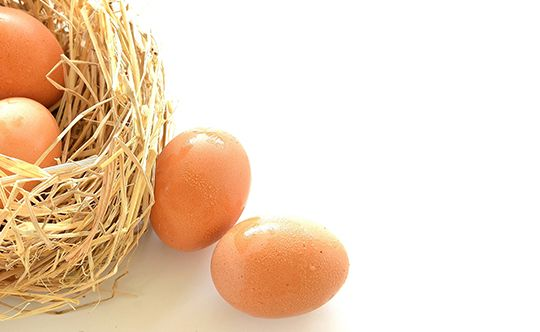 Featured-image-are-omega-3-eggs-a-better-option-for-website