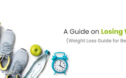 a-guide-on-losing-weight-web-site-banner-size-834x332-